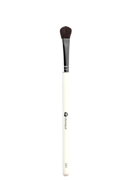 D81 Cosmetic Brush Eyes with case